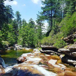 Fleuve de la forêt Aîtone