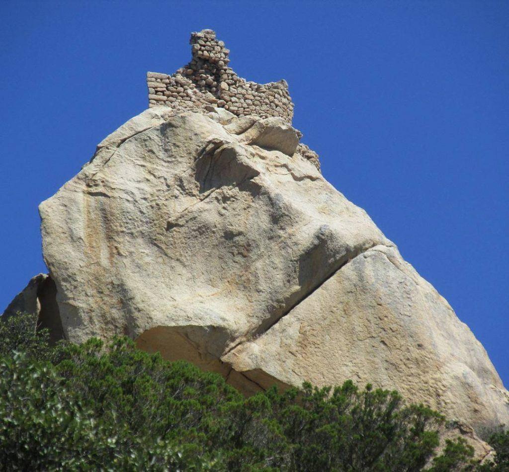 Lion rocca