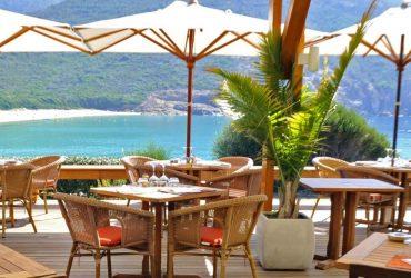Les meilleurs restaurants de Corse : qu'est-ce qui fait le charme de ces établissements ?